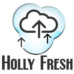 Lebensmittelaromentest - OWL Dampfer's edle Kompositionen - Vanilla Custard / Holly Fresh / BaKi / Menthol Fresh / Mothersmilk